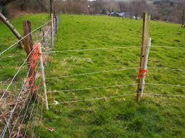 ограда електропастир