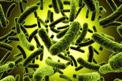 Микробите при децата